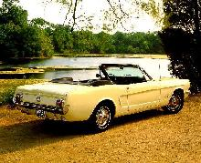 Mustang Convertible White  Rear view (1964)