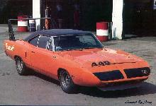 Road Runner superbird