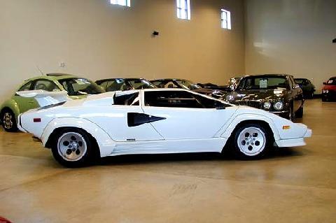 Lamborghini Countach White Svr 1985 Picture Gallery Motorbase