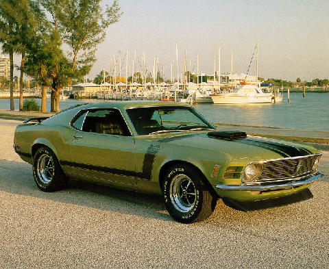 Ford Mustang Boss 302 Fastback Fvr  (1970)