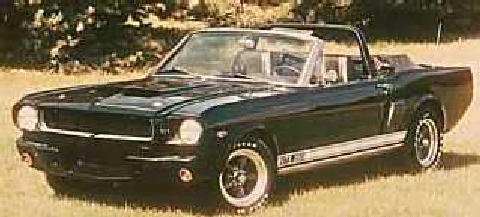 stangvertShelbyclone Black (1965)