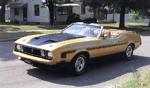 Ford Mustang Rag 351a (1973)