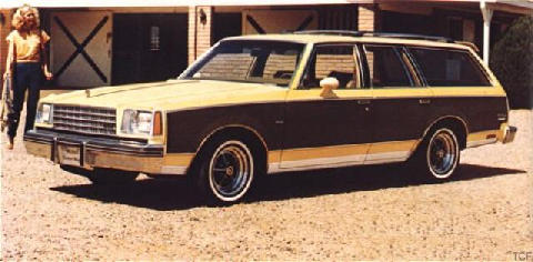 Buick Century Estate Wagon (1980)