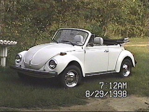 My Beetle   Top Down