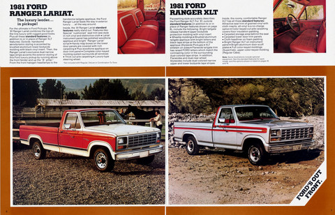 1981 Ford Pick-up 04